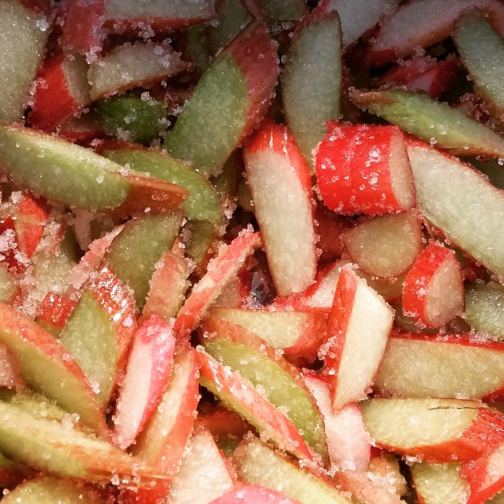 rabarber med sukker i sæson