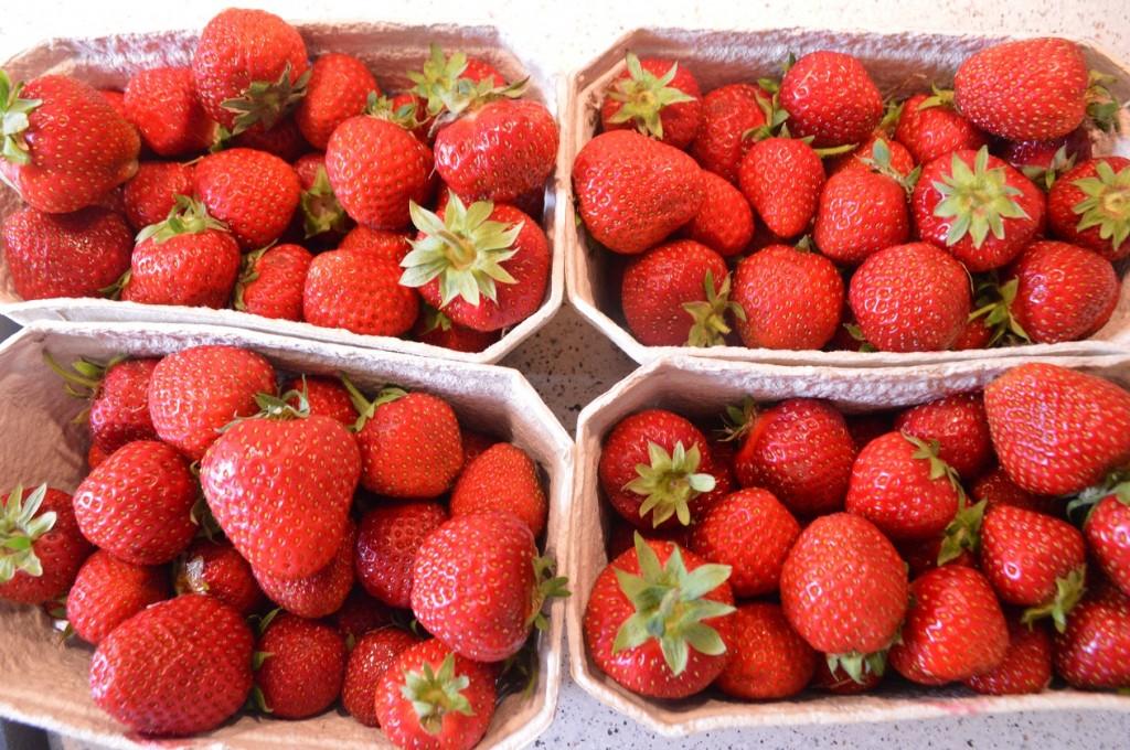 Jordbær hyldeblomst marmelade