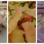 Et fif til æblerester – stop spild af mad
